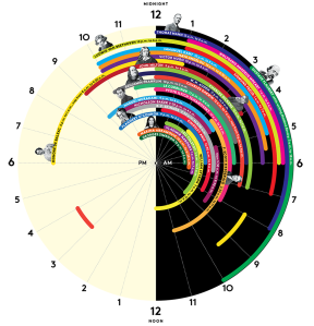 This just shows how important sleep can really be. Here we have a schedule of some of the worlds greatest minds. On average they slept about eight hours each.