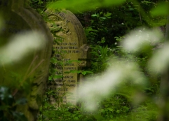 Good headstone.(crop)jpg