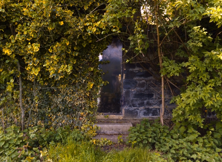 Door wide shot (yellow).jpg