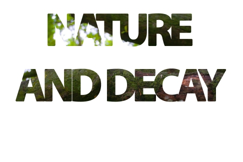 nature and decay good